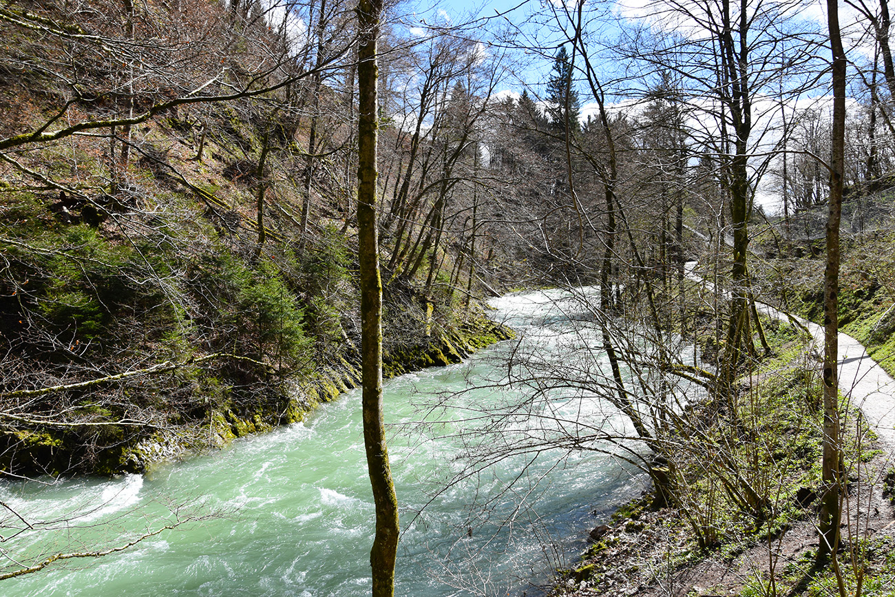 Vintgar Kloof in Slovenië