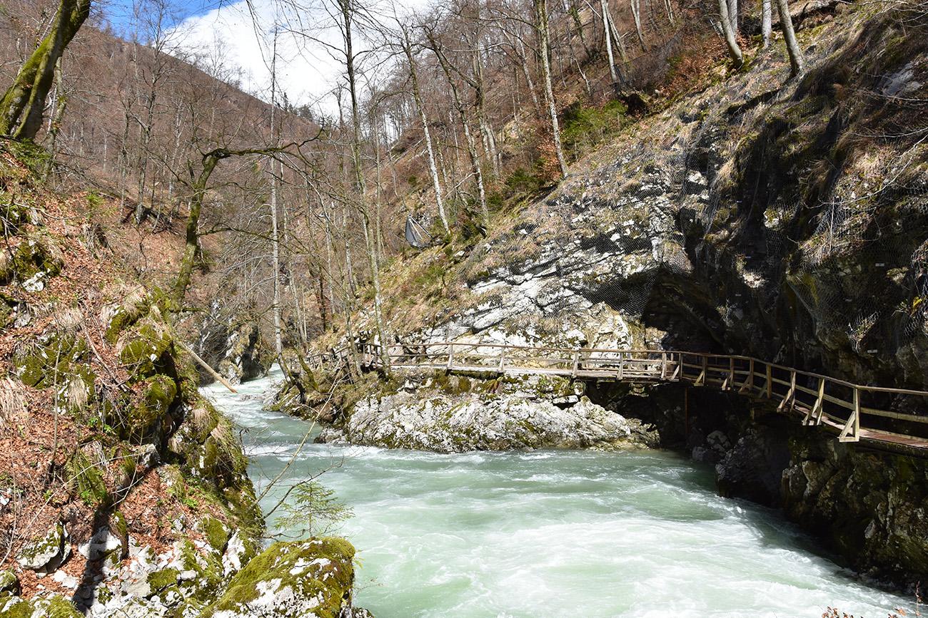 Vintgar Kloof in Slovenie